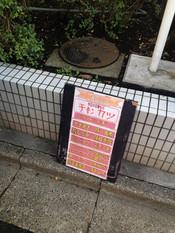 Shima20121107