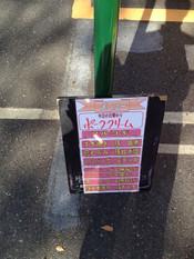 Shima20121115