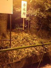 Meijijingu02