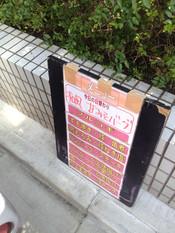 Shima20130326